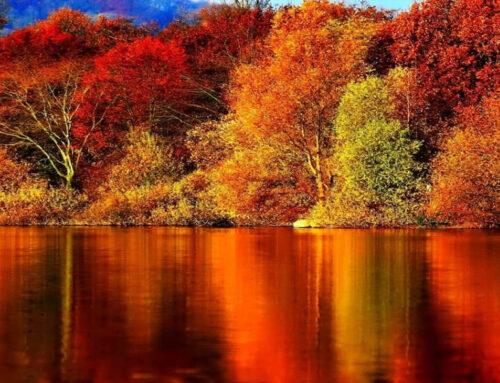Ottobre rosso. L'eleganza dell'autunno.